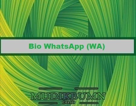 bio whatsapp