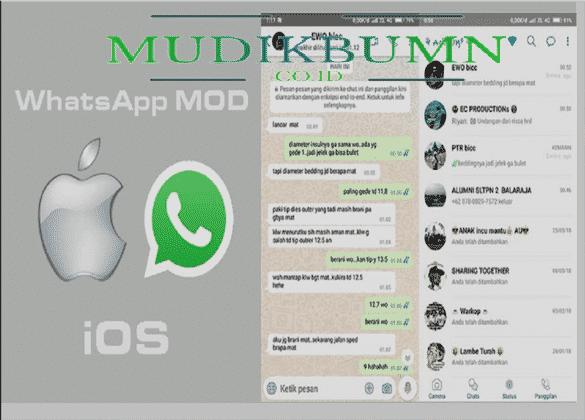 whatsapp mod ios 14
