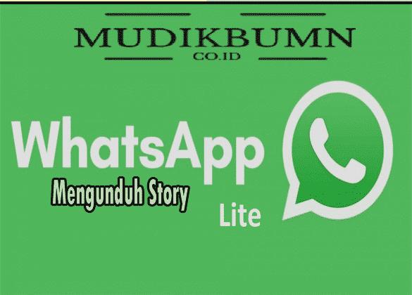 instal whatsapp lite