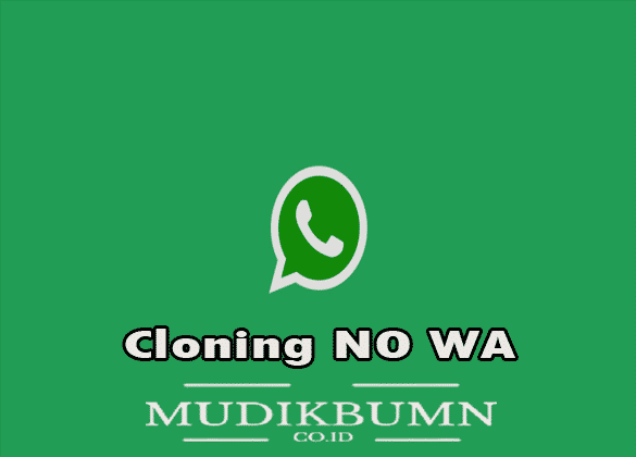 whatsapp clone apk