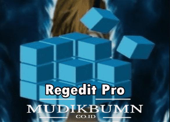 download regedit pro free fire