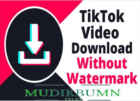download aplikasi Video Downloader for TikTok