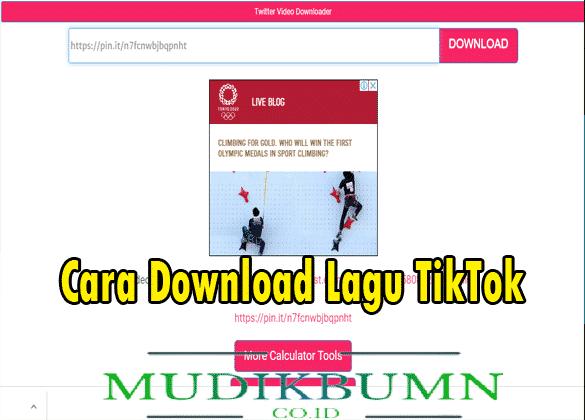 download lagu tiktok viral ExpertsPHP