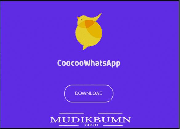 download wa mod cocoo